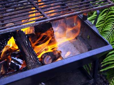 Weber Elektrogrill Lagerung : Grillholz als brennmaterial grillportal.com